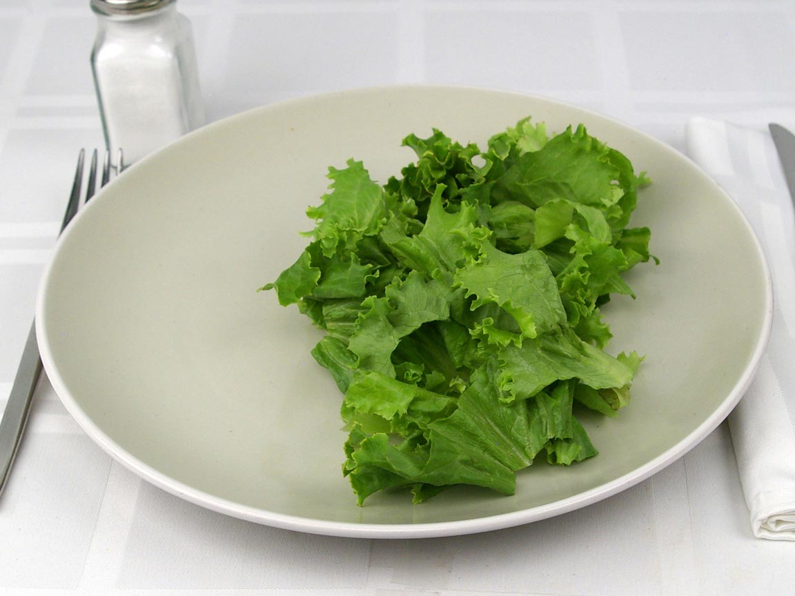 Calories in 0.75 cup(s) of Green Leaf Lettuce